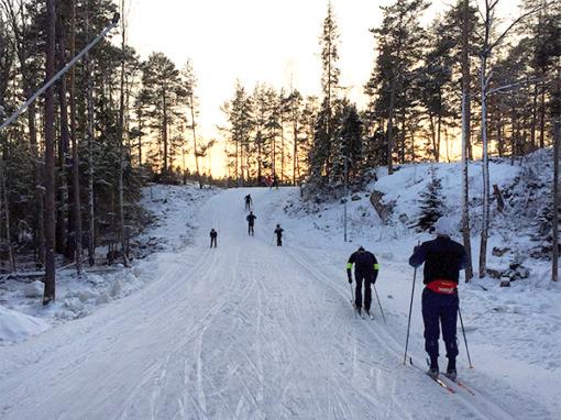 Teknikkurs i längdskidor