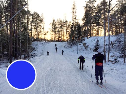 Teknikkurs längdskidor, blå nivå